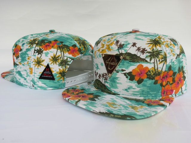 HATER Snapbacks Hat LS05